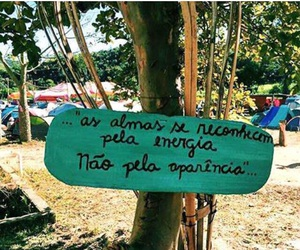 brasil, hippie, and quotes image