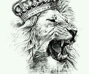 art, king, and lion image