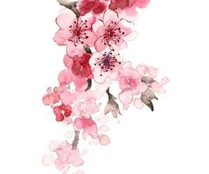 paint and sakura image