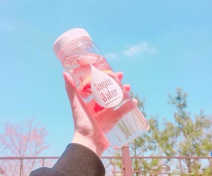 bottle and pink image
