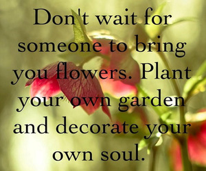 quotes, flowers, and soul image