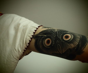 owl, tattoo, and arm image