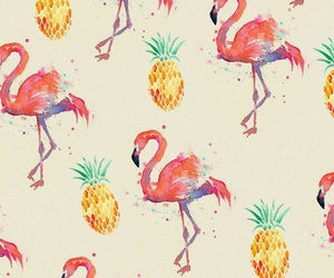 background, cool, and flamingos image