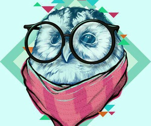 owl, wallpaper, and hipster image
