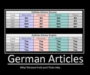 german, funny, and grammar image