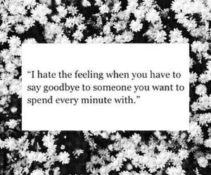 hate goodbyes image