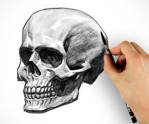 black&white, charcoal, and skull image