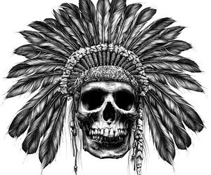 skull, drawing, and feather image