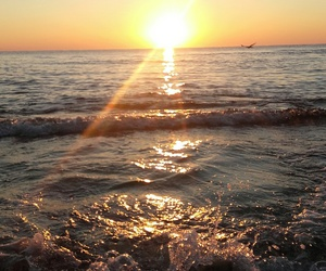 summer, sunrise, and sea image