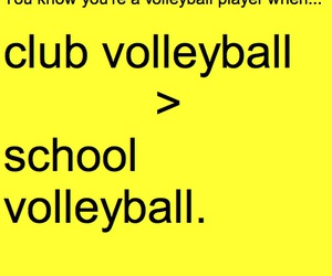 sport, volleyball, and volleyball player image