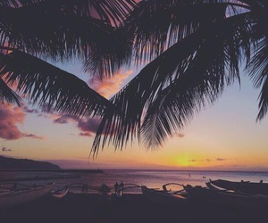 girl, beach, and palm trees image