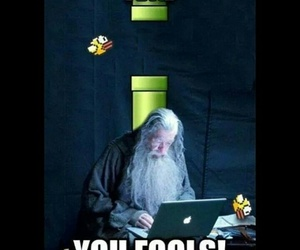 gandalf, lord of the rings, and flappy bird image