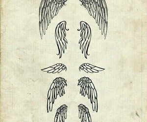 wings, angel, and drawing image