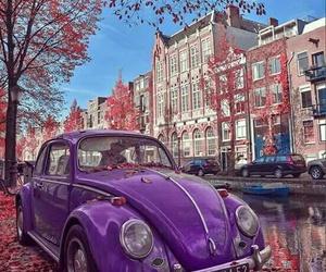 purple and car image