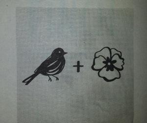death, finch, and heartbreak image
