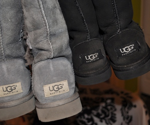 shoes, ugg, and ugg australia image