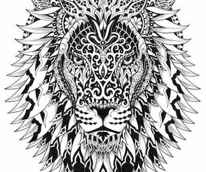 lion, mandala, and drawing image