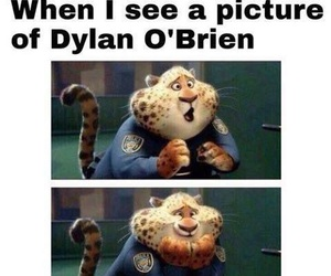 dylan o' brien, o' brien, and dylan image