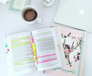college, book, and study image