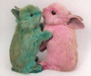 bunny, pink, and rabbit image
