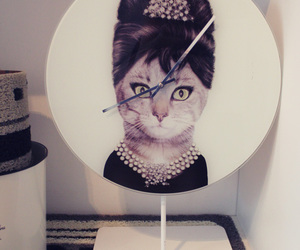brazil, Breakfast at Tiffany's, and cat image