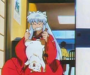 inuyasha, anime, and cat image