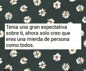 frases, tumblr, and palabras image