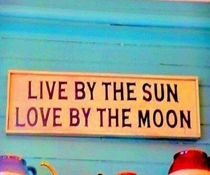 live, sun, and love image