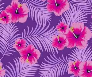 pink, wallpaper, and flowers image