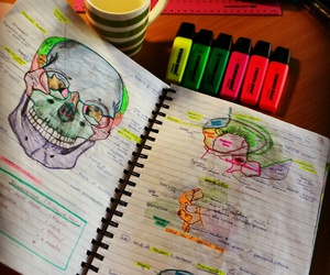 art, medicine, and school image