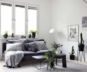 home, interior design, and plants image