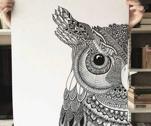 art, owl, and animal image