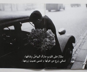 بنت بنات شباب رجال, عربي عرب كتابه اقتباس, and ورد جوري تمبلر image
