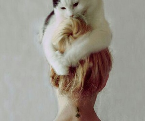 cat, hair, and tattoo image