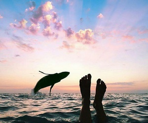 summer, sea, and sunset image