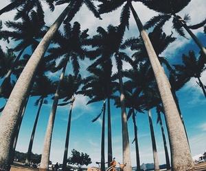 beach, summer, and bike image
