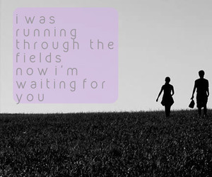 fields, life, and Lyrics image