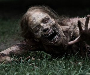 the walking dead, zombie, and article image