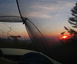 grunge, sunset, and nature image