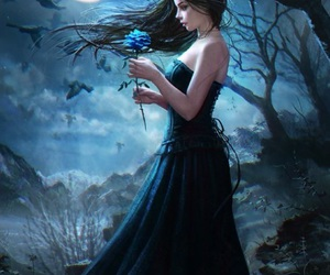 fantasy, night, and rose image