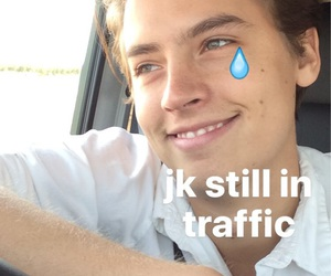 cole, cute, and sprouse image