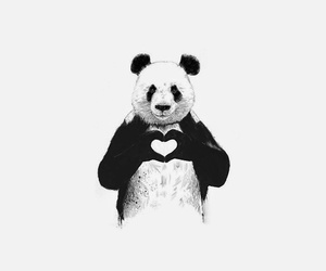 panda, heart, and black image