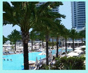 paradise hotel palms pool image