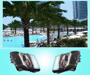 paradise pool palms hotel image