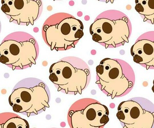 wallpaper, cute, and dog image