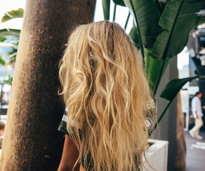 blonde, plant, and hair image
