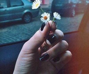 flowers, grunge, and black image