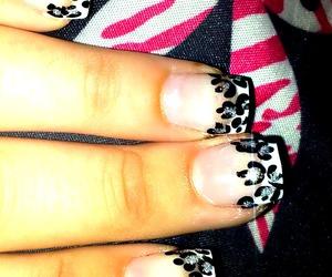 nails and print image