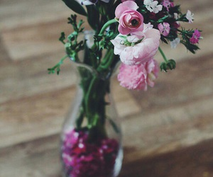 beauty, roses, and flowers image
