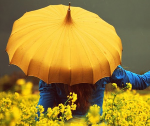 yellow, umbrella, and flowers image